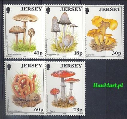 Jersey 1994 Mi 639-643 Czyste **