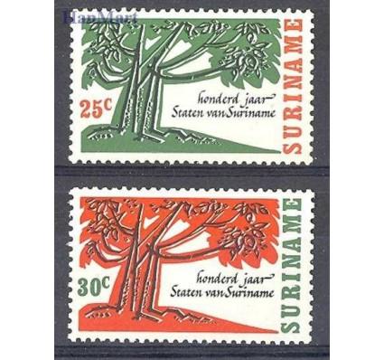 Znaczek Surinam 1966 Mi 503-504 Czyste **