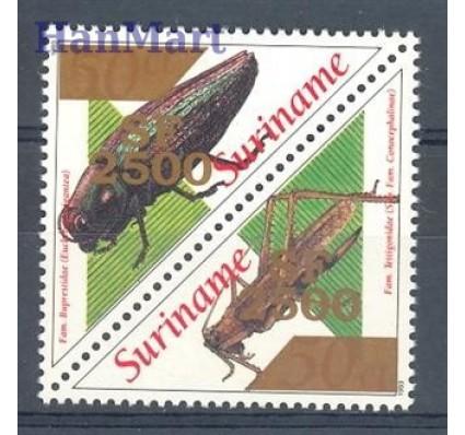 Znaczek Surinam 2001 Mi 1802-1803 Czyste **