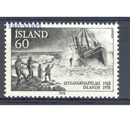 Islandia 1978 Mi 536 Czyste **