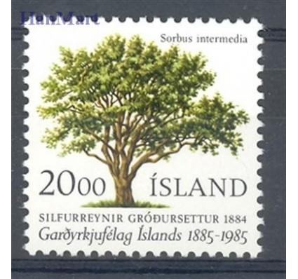 Znaczek Islandia 1985 Mi 634 Czyste **