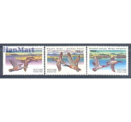 Znaczek Rosja 1995 Mi 462-464 Czyste **
