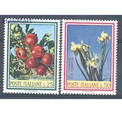 Znaczek Włochy 1967 Mi 1247-1248 Czyste **