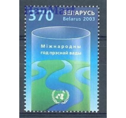 Znaczek Białoruś 2003 Mi 483 Czyste **