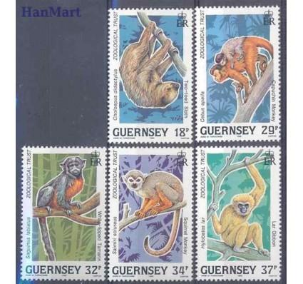 Znaczek Guernsey 1989 Mi 465-469 Czyste **