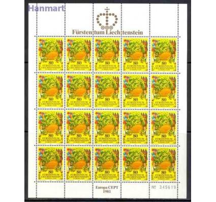 Liechtenstein 1981 Mi ark 764-765 Czyste **