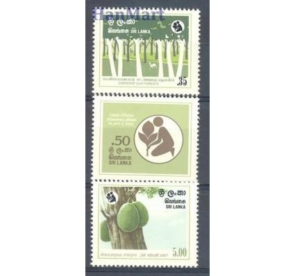 Znaczek Sri Lanka 1981 Mi 567-569 Czyste **