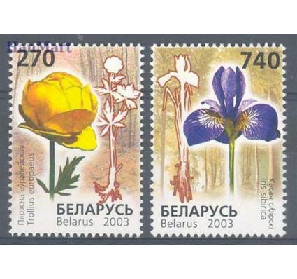 Znaczek Białoruś 2003 Mi 490-491 Czyste **