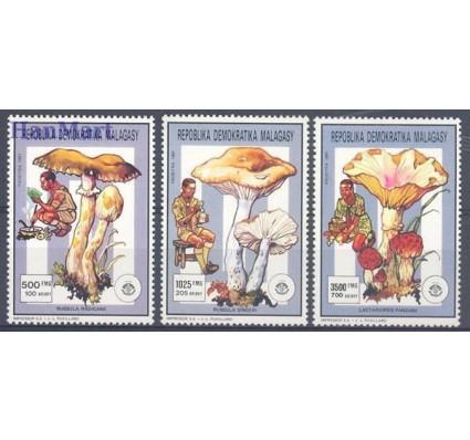Madagaskar 1991 Mi 1314 Czyste **