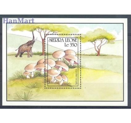 Znaczek Sierra Leone 1990 Mi bl 151 Czyste **
