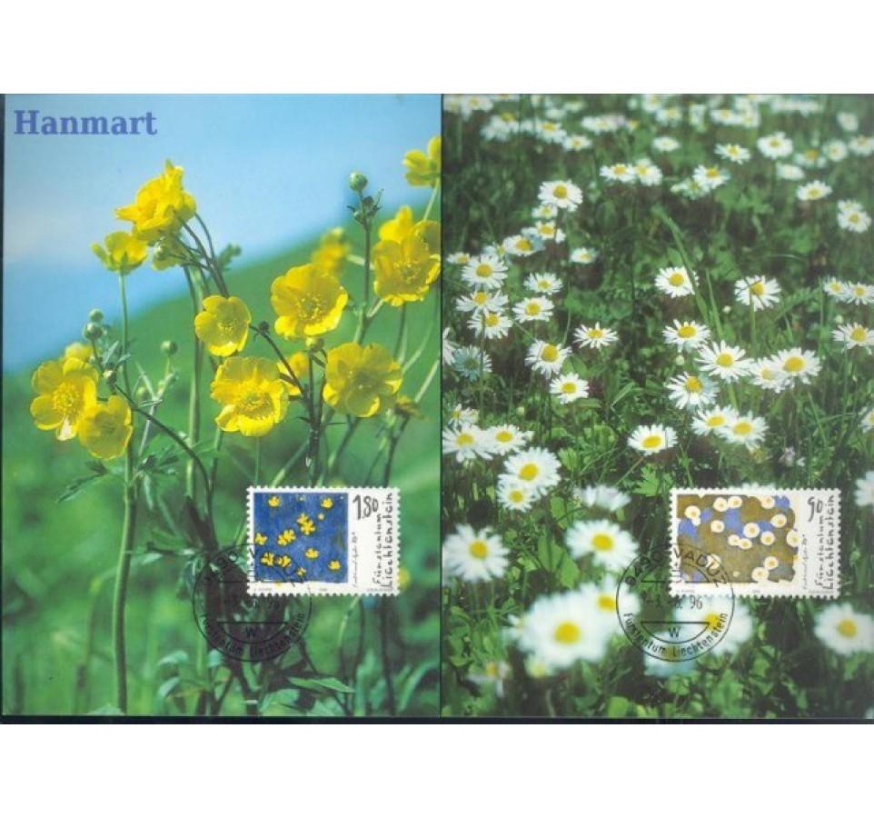 Liechtenstein 1996 Mi 1132-1135 Karta Max