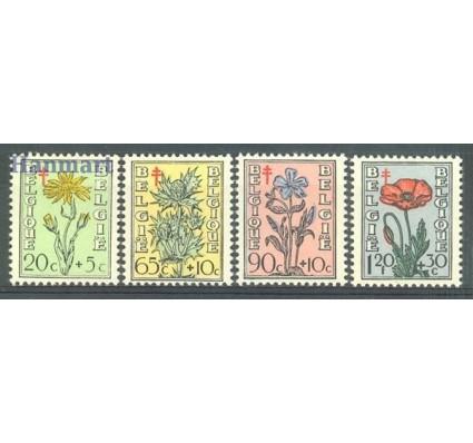 Znaczek Belgia 1949 Mi 854-857 Czyste **
