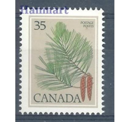 Znaczek Kanada 1979 Mi 719 Czyste **