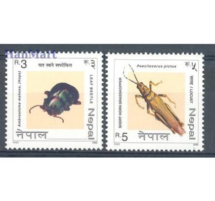 Znaczek Nepal 2002 Mi 752-753 Czyste **