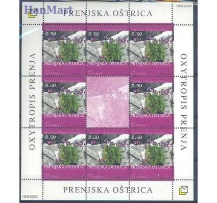 Znaczek Mostar 2003 Mi ark 110 Czyste **