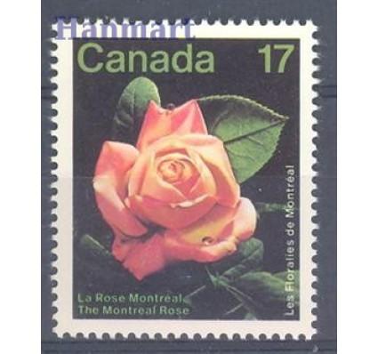 Znaczek Kanada 1981 Mi 805 Czyste **