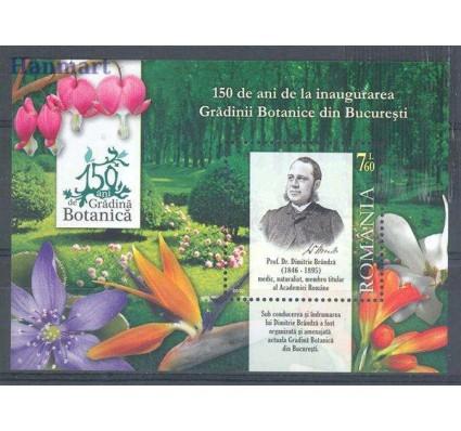 Znaczek Rumunia 2010 Mi bl 471 Czyste **