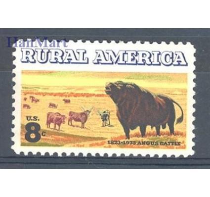 Znaczek USA 1973 Mi 1122 Czyste **