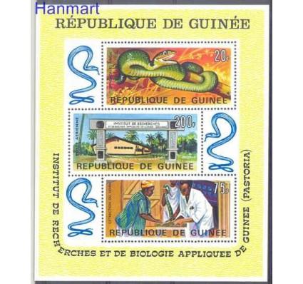 Znaczek Gwinea 1967 Mi bl 24 Czyste **