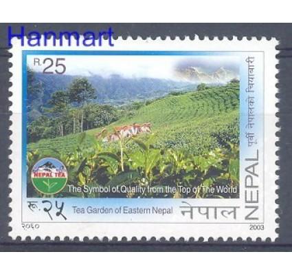 Znaczek Nepal 2003 Mi 767 Czyste **