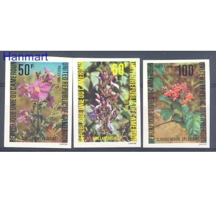 Kamerun 1980 Czyste **