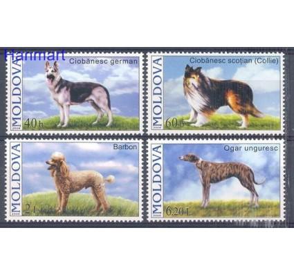 Znaczek Mołdawia 2006 Mi 565-568 Czyste **
