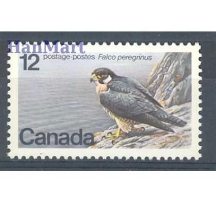 Znaczek Kanada 1978 Mi 680 Czyste **
