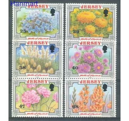 Znaczek Jersey 2002 Mi 1041-1046 Czyste **