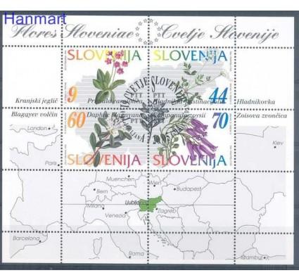 Znaczek Słowenia 1994 Mi bl 1 Stemplowane