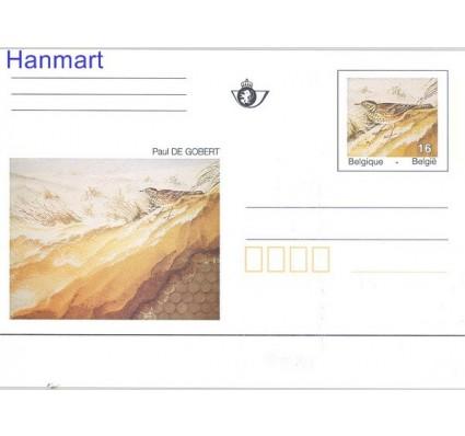 Znaczek Belgia 1996 Mi 51 Całostka pocztowa