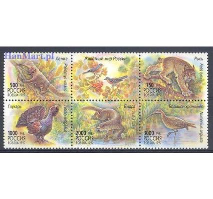 Znaczek Rosja 1997 Mi 597-601 Czyste **