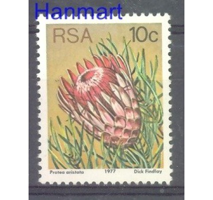 Republika Południowej Afryki 1982 Czyste **