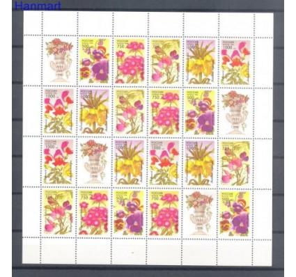 Znaczek Rosja 1996 Mi ark 480-484 Czyste **