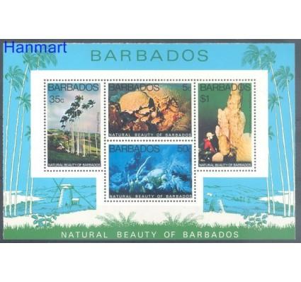 Znaczek Barbados 1977 Mi bl 10 Czyste **