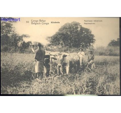 Znaczek Kongo Kinszasa / Zair  Mi 50 Całostka pocztowa