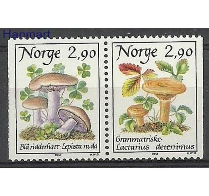 Znaczek Norwegia 1988 Mi 990-991 Czyste **