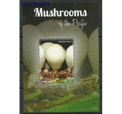 Znaczek Mikronezja 2013 Mi bl 240 Czyste **