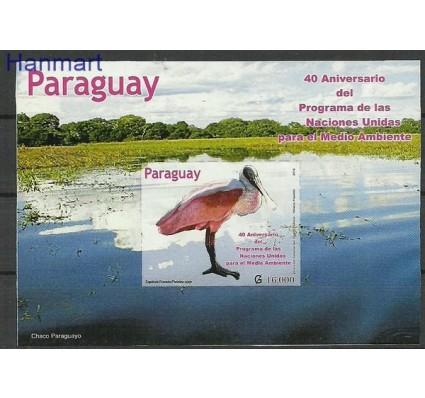 Znaczek Paragwaj 2012 Mi bl 494 Czyste **