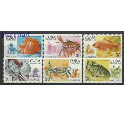 Znaczek Kuba 1994 Mi 3749-3754 Czyste **