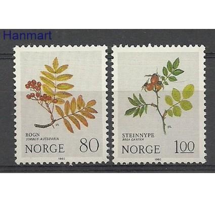 Znaczek Norwegia 1980 Mi 825-826 Czyste **
