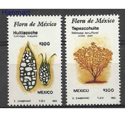 Znaczek Meksyk 1988 Mi 2112-2113 Czyste **