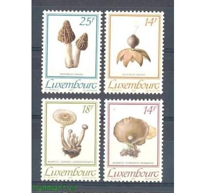 Znaczek Luksemburg 1991 Mi 1267-1270 Czyste **