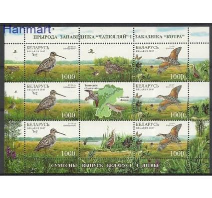 Białoruś 2007 Mi ark 670-671 Czyste **
