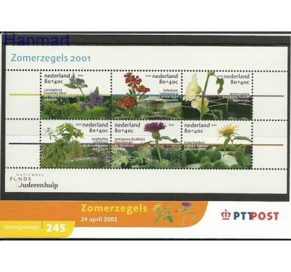 Znaczek Holandia 2001 Mi bl 70 Czyste **